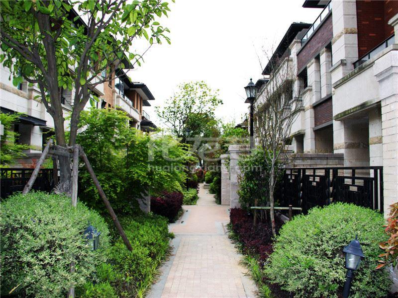 出售别墅云龙1号5室2厅小区,高端新别墅环境优雅,a别墅装修,性价比高绿地外滩茶陵图片