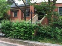花园街地鉄旁 莱蒙城稀世独栋别墅 600平毛坯1300万 满两年