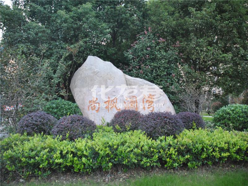尚枫澜湾实景图