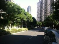 天安河滨花园出售 小区中心位置,面对泳池,间距大,采光好