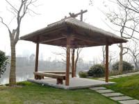 3.11丁唐河湿地公园