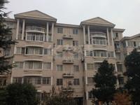 中心地段少有多层阳湖世纪苑精装大四居 满五唯一省税 好楼层户型好看房方便