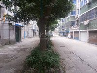 浦南南村 中装带院子 20平 2房60平70万 可以开店