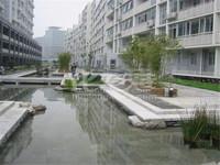新推,星河国际旁长河花园毛坯29楼朝南两室,满二有钥匙,星河实小,吾悦商圈