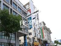 桃园公寓,中层,采光好,91平方,精装清爽,拎包入住,房东急售250万,满五唯一