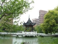 黄金地段西新桥春天花园超低豪装3房全明通透黄金楼层河景房
