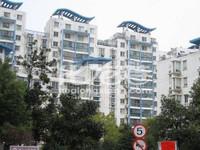 晋林路上的商铺 大诚苑商铺 对面常发豪庭 隔壁各个酒店