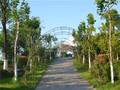 溪栖庄园实景图