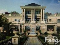 金新鼎邦稀缺双拼别墅法式风格,豪门名流,全朝南户型。