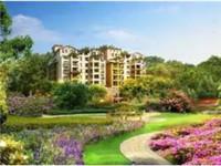 红梅张家村私房出售 五角场大桥引桥下。产权面积37平方,