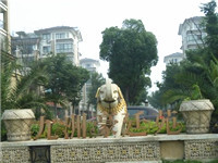 九洲豪庭苑