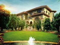 长江国际花园花园洋房,叠加,联排独栋别墅,多种户型