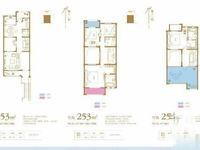 新房出售 长宇棕榈湾别墅 3联排6联排 边户中间户都有 直签