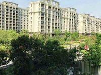 长江国际花园小洋房均价6500免费开车带你旅游看房