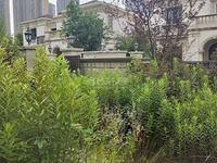 新城香悦半岛独立别墅 500平方 看房提前预约1700万