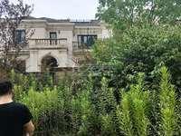 新城香悦半岛独立别墅,新房500平1720万,院大,送车位,多套