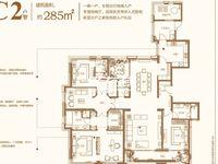 金地天际纯毛坯大平层2-甲-1401 285平 前排采光无遮挡