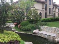 泰兴长江国际花园洋房叠加联排独栋开发商直签随你选