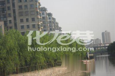 百草苑藻江花园水木年华附近2室精装清爽入住还有多套房源