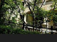 淹城公园旁红星国际广场 别墅 排屋边套出售