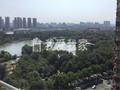 青枫公园旁凯尔枫尚楼皇景观层精装可俯视公园全景二室二朝南全明通透140万急售满二