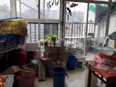 锦阳花苑 荆川里续建 146平方电梯复式送阳光房露台储藏室
