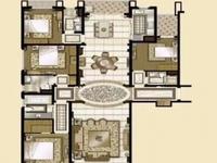 低于同小区50万,单价不到1.3万,纯毛坯大平层,全套房设计