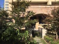 淹城旁 红星威尼斯庄园 联排别墅 毛坯房 带地下室 大院子