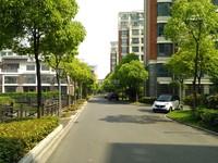 导士镇厂房15亩国有工业用地,6000平方厂房行车办公