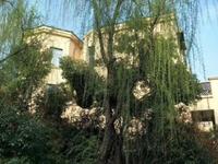 万水美兰城 双拼别墅 实际面积约500平米超大院超大院抄底价