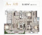 A户型 天悦 187㎡ 5房2厅2卫