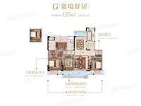 武进马杭观堂 新房交付 电梯洋房 均价1万多 随时看房