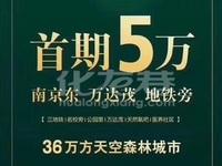 南京东 仙林印象首付仅需5万 南京学 区 水电 车牌 各种面积段 楼层可选 开售