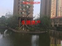 璞丽湾Ⅱ期珑苑 3室2厅1卫