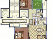 新出绿城玉兰广场毛坯三房,4.8米大开间客厅,实小本部,有钥匙随时看