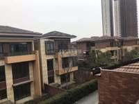 专营别墅 西太湖畔星河dan堤联排别墅 475平方客厅挑高5.8米看房随时