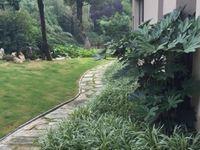 天安别墅333平豪装独栋别墅花园一亩地1280万