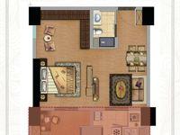 朗诗 万达旁边,朗诗公寓,有燃气的公寓,阳台半赠送