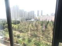 通江路沿线首付15万起 锦鲤朝南 小公寓