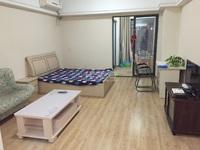新北万达精装单身公寓 首次出租 朝南住宅楼
