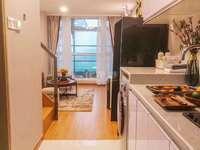 大学城loft公寓 挑高5.6米 使用面积120平 国企开发