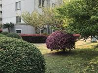 藻江花园4楼三南二厅二卫简装东边户双阳台超好户型13961177292