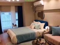 新桥金科保利 复式公寓 挑高4.8米 36万 买1套得2套