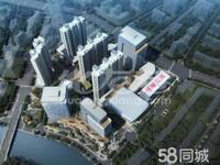 市中心运河天地 复试挑高公寓买35得70平首付25万起 直签