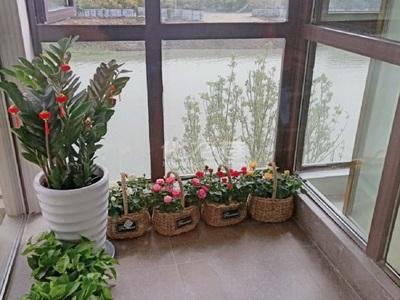 太湖庄园二期 观山湖 联排别墅前后院子 送花园 售楼部直签