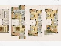 嬉戏谷旁 旷达太湖花园 阳房 可改两房 旅游度假 随时看房