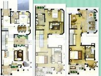 新出清枫公馆院子大大别墅一套,户型好,高性价比把握房源