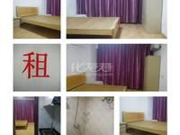 出租高力国际SOHO1室1厅1卫37.6平米1100元/月住宅