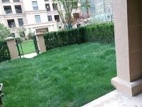 玉兰广场边户底复,电梯洋房小别墅一二楼加两层地下室共四层送前后私家花园大院子
