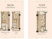 市中心运河天地小公寓总价45万出售